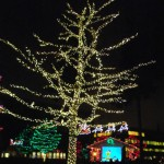 Enjoying Christmas: Parties and Parades