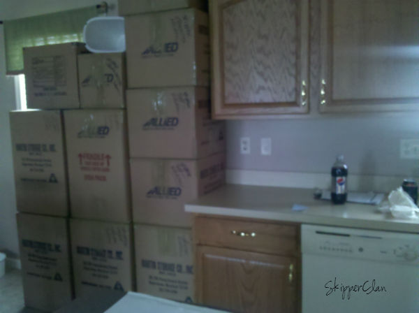 moving boxes at SkipperClan