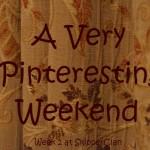 A Very Pinteresting Weekend - Week 2 at SkipperClan