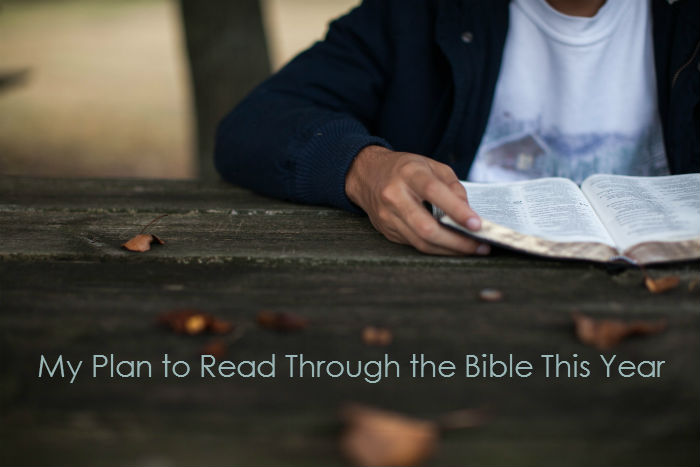 My Plan to Read Through the Bible This Year photo via Lightstock